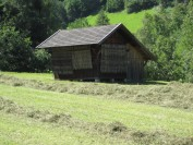 Barn with the Hiefler Stands