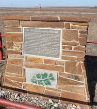 Tallgrass Prairie Preserve