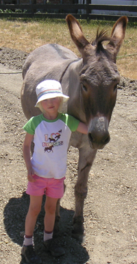 Anna Jasper the Donkey