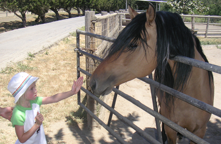 Anna Meeting Spirit the Stallion of the Cimmaron